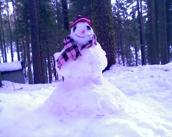 Pinecrest Chalet: snowman onsite made by other guests