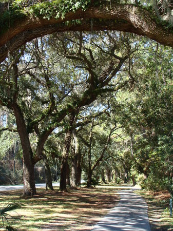 Jekyll Island, Georgien: Excellent Bike Trails