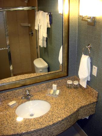 Hilton Garden Inn Phoenix North Happy Valley: Bathroom with shower