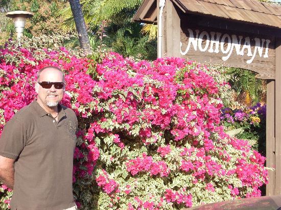 Nohonani Condos: Beautiful Nohonani