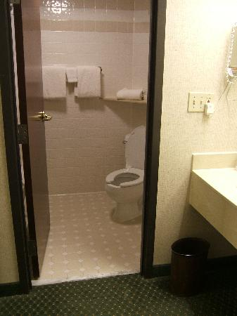 Drury Inn & Suites Houston West/Energy Corridor: Bathroom and sink area