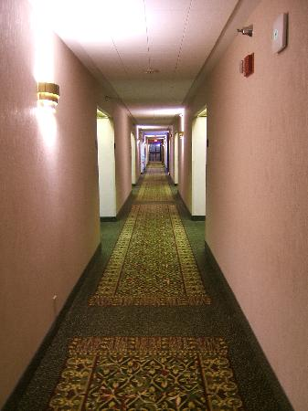 Drury Inn & Suites Houston West Energy Corridor: Hallway
