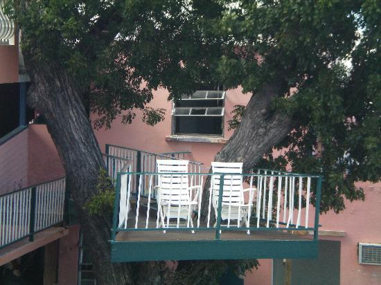 Company House Hotel: The treehouse- a great place to access the internet!
