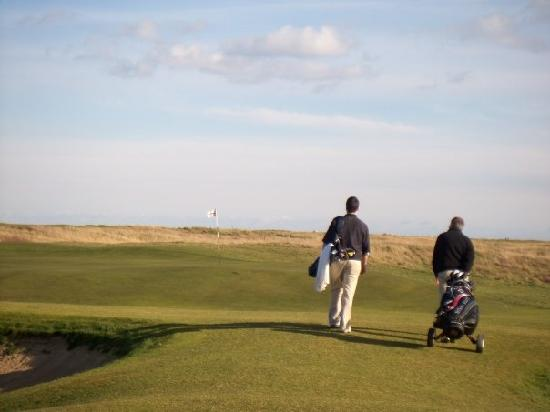Royal St. George's Golf Club: 15th green.  An example of the false front that exists on a lot of these greens