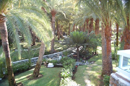 Hotel Riu Palace Oasis: Another view of the gardens