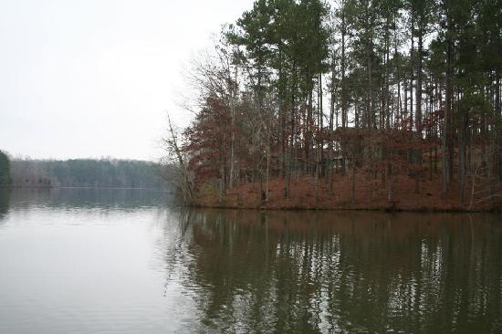 Natchez Trace State Park Notice The Cabin Picture Of