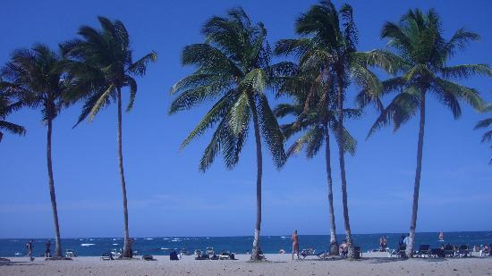 La plage du Celuisma Hôtel