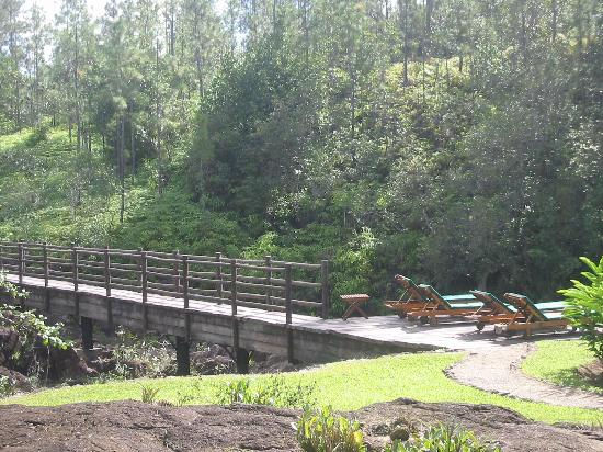 Blancaneaux Lodge : bridge