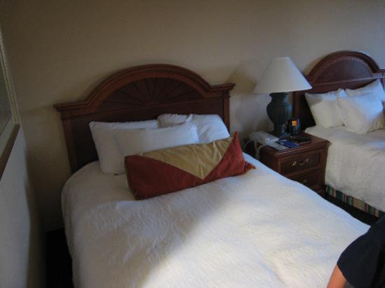Hilton Garden Inn Tampa East/Brandon: Bed