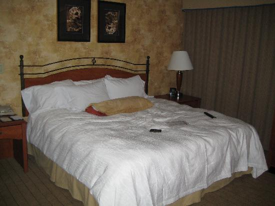 Hilton Garden Inn Phoenix Airport: Large and comfortable bed