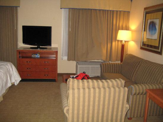 Hilton Garden Inn Phoenix Airport: Living area with flat screen (but NOT HD) television
