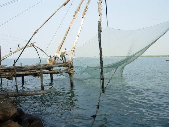 Thekkady, India: Chinese Fishing Nets Fort Kochi