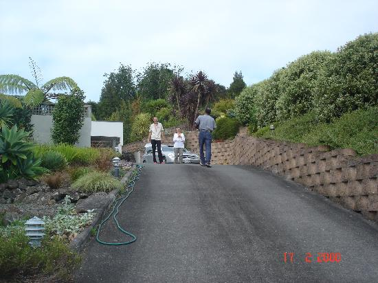 Whangarei Views Bed and Breakfast & Apartment: pathway leading to WV