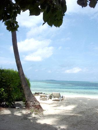 Male: une plage paradisiaque sur Faru