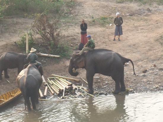 Lao Spirit Resort : View at brekkie