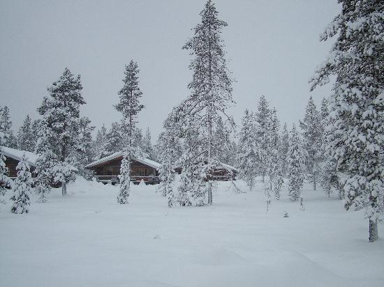 Saariselka, Finnland: Our log cabin