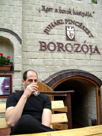 Dobo Guesthouse: wine tasting