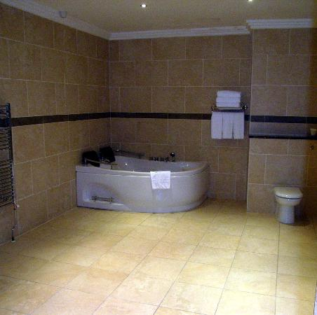 Amber Springs Hotel and Health Spa: Bathroom