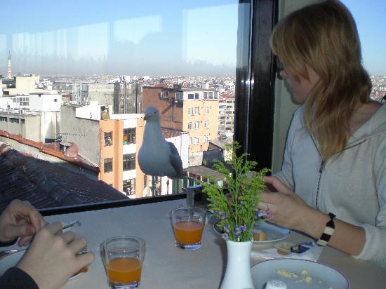 Seres Old City: Compañia en el desayuno
