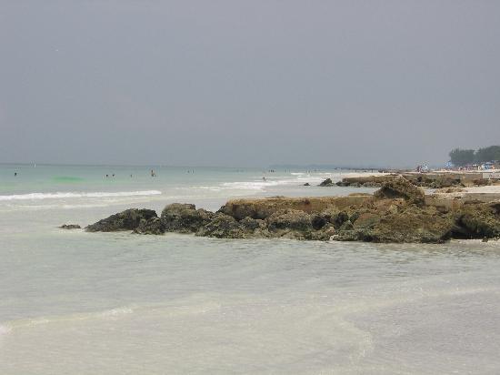 The Blue Dolphin Inn : nearby beach on anna maria island