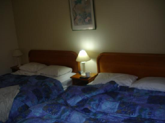 Hamilton Motor Inn : room - basic but clean