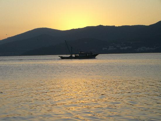 Sunrise at Torba Bay