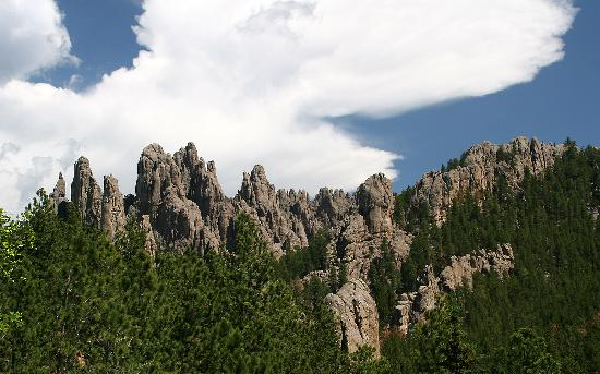 Super 8 Custer / Crazy Horse Area : The Needles, Custer State Park