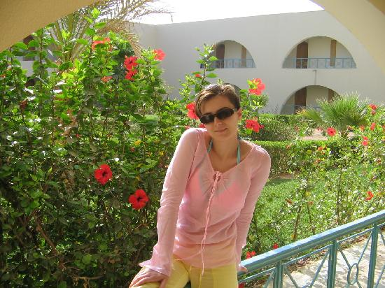The Desert Rose Resort: gardens...