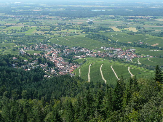 Baden-Baden vineyards