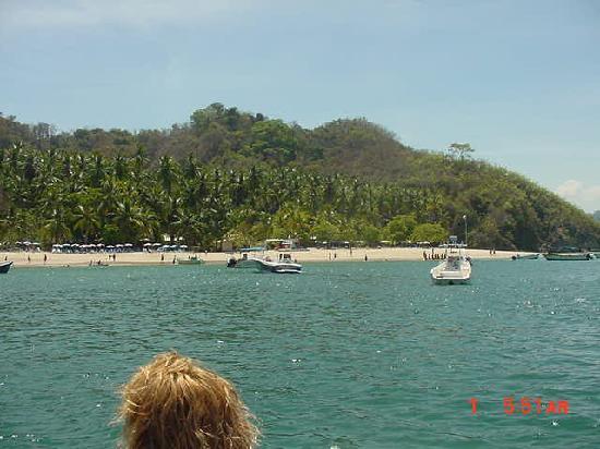 Isla Tortuga: 7