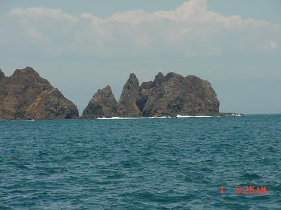 Isla Tortuga: 8