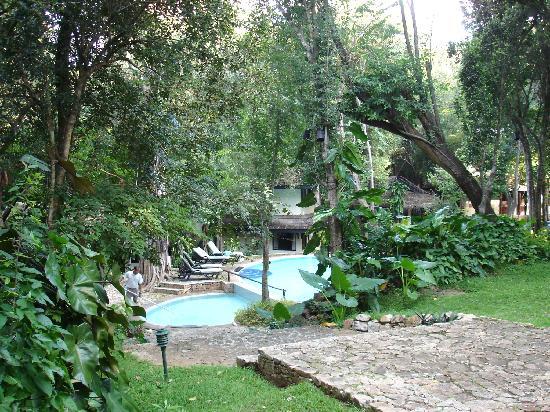 Deer Park Hotel: piscine