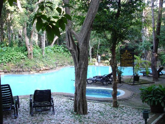 Deer Park Hotel : piscine