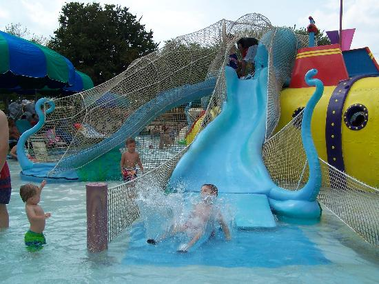 Schlitterbahn New Braunfels Waterpark : lol ! Kids having fun !