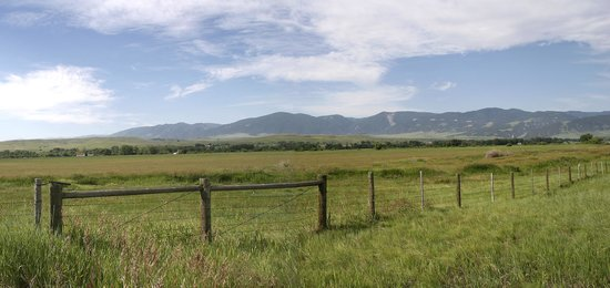 Lupine Inn: Bighorn Mountains near Dayton