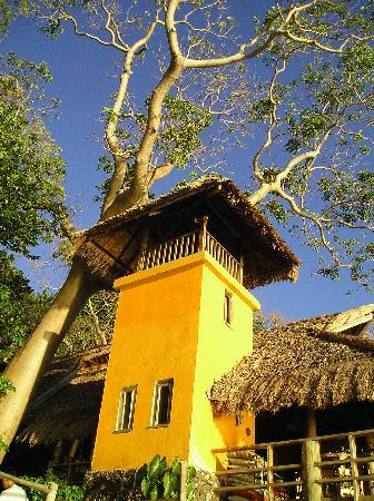 Balai Resort Anilao: the tower and ghost tree of Balai