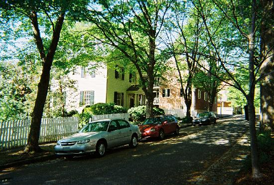 Augustus T. Zevely Inn: the street out front - no traffic and gorgeous trees and shade