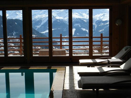 Le Chalet d'Adrien: Pool, La Chalet d'Adrien