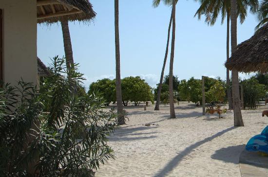 Neptune Pwani Beach Resort & Spa: Hotel Beach