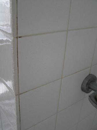 Mona Pavilions : Dirty grouting in shower