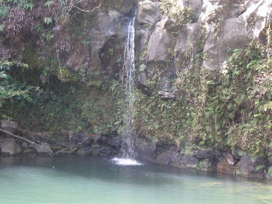 Pua'a Ka'a State Park: Front waterfall
