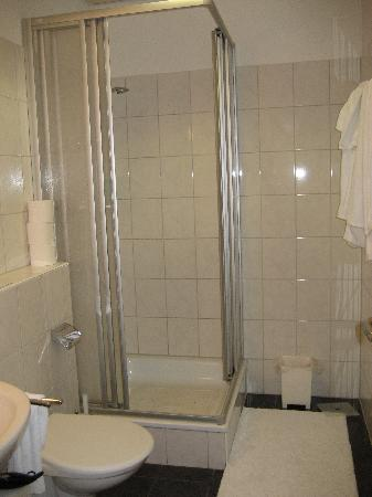 iPR Guestroom Bed and Breakfast: shower