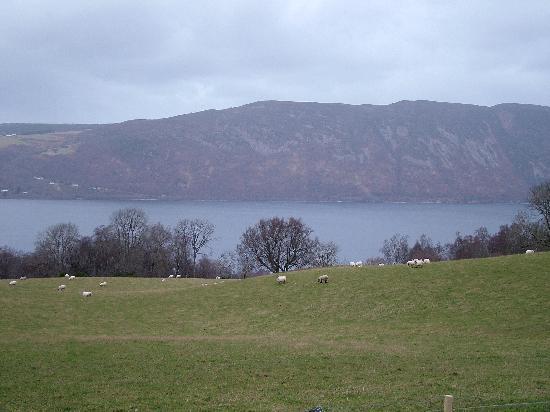 Loch Ness Log Cabins: Loch Ness
