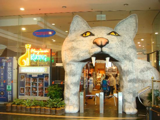 Cat Museum: Entrance if free. Have to pay for taking photo