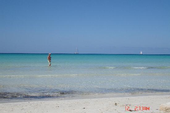 Playa de Es Trenc: Es Trenc beach