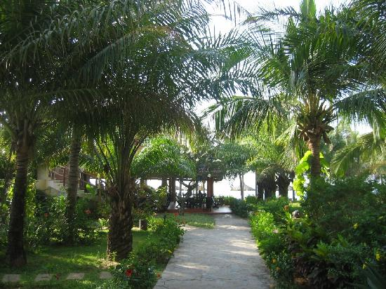 The Beach Resort, garden