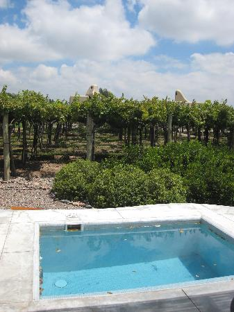 Cavas Wine Lodge: our own plunge pool  (too chilly to swim in)