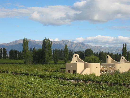 Cavas Wine Lodge: hotel rooms with andes in background
