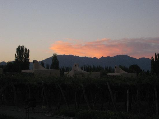 Cavas Wine Lodge: sunset at Cavas