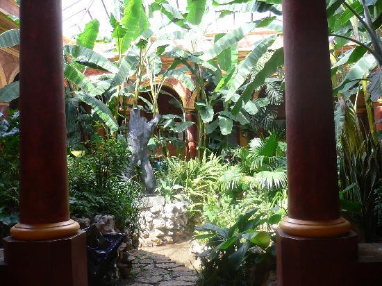 Hotel Casa Mexicana: Innenhof